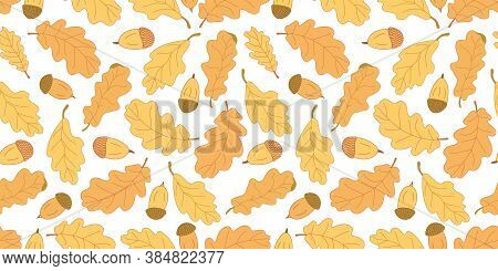 Autumn Vector Seamless Pattern With Oak Leaves And Acorns On White Background. Great For Fabrics, Wr