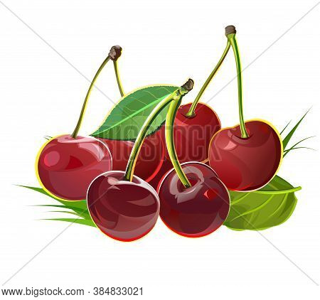 A Handful Of Cherries. Isolated Vector Objects. Illustration. Several Ripe Berries With Stalks And L
