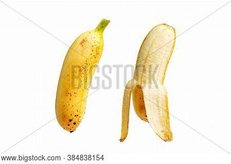 Yellow Pisang Mas Banana On White Background.