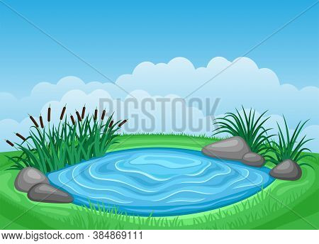 Summer Illustration Landscape With Pond And Reeds.