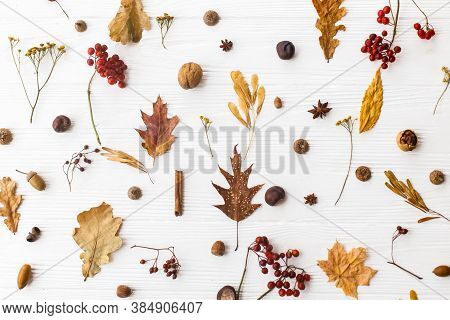 Autumn Flat Lay. Fall Leaves, Berries, Acorns, Walnuts, Cinnamon And Anise On White Background. Mini