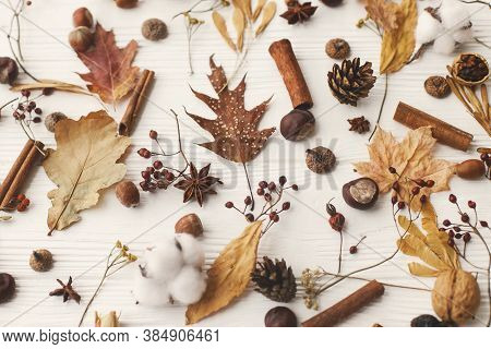 Autumnal Pattern With Natural Forest Details. Autumn Leaves, Berries, Acorns, Walnuts, Cinnamon,anis