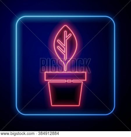 Glowing Neon Plant In Pot Icon Isolated On Blue Background. Plant Growing In A Pot. Potted Plant Sig