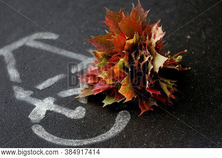 Bunch Of Colourful Red And Yellow Maple Leaves On The Cycling Sign Background Closeup. Autumn Coming