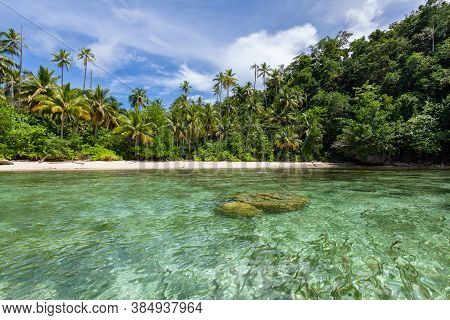 Jungle Forest White Sand Beach Turquoise Lagoon. Southeast Asia. Togean Islands