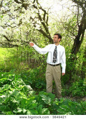 Man In The Spring Garden