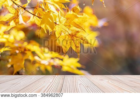 Empty Wood Table Mockup On Yellow Maple Leaves Background In The Garden With Copy Space For Text, Mo