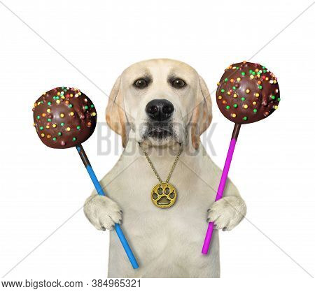 A Dog In A Gold Footprint Pendant Is Eating Chocolate Cake Pops. White Background. Isolated.