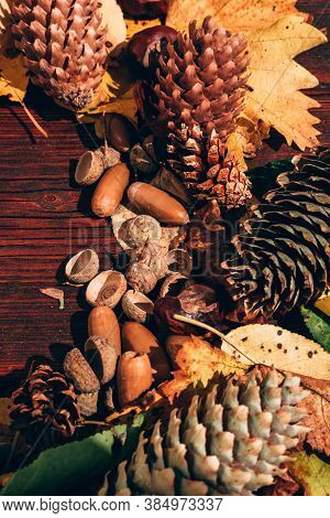 A Lot Of Yellow Fallen Leaves On The Brown Wooden Table, Acorns And Pine Cones Nearby. Autumn Atmosp