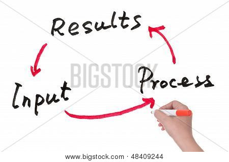 Input, Process And Results