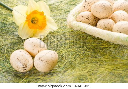 Daffodil And Basket With Easter Eggs