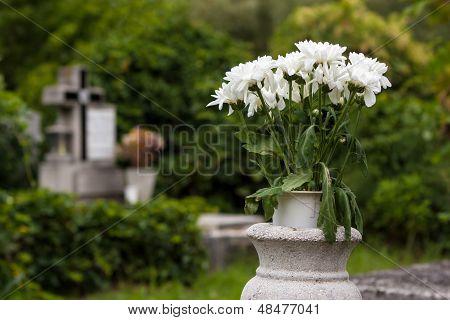 Flowers In Cemetery