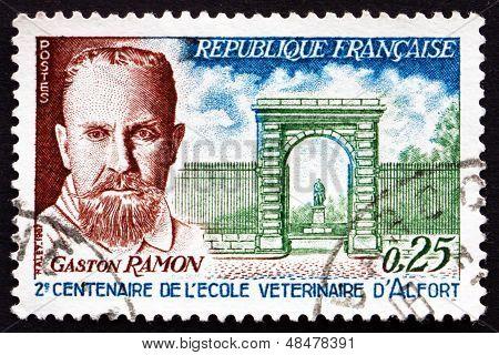 Postage Stamp France 1967 Profesor Gaston Ramon
