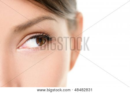 Eye close up - brown eyes looking to side isolated on white background. Mixed race Asian Caucasian woman looking sideways. Closeup of brown female eye.