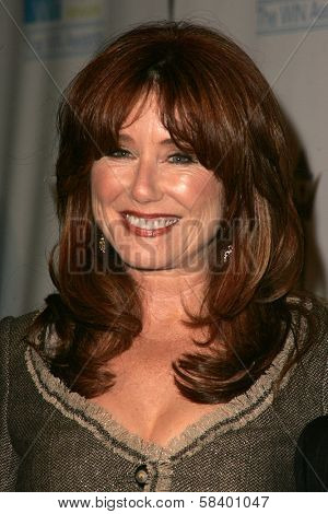 LOS ANGELES - NOVEMBER 1: Mary McDonnell at the 2006 Women's Image Network Gala Honoring Senator Barbara Boxer at Wadsworth Theater on November 1, 2006 in Los Angeles, CA.