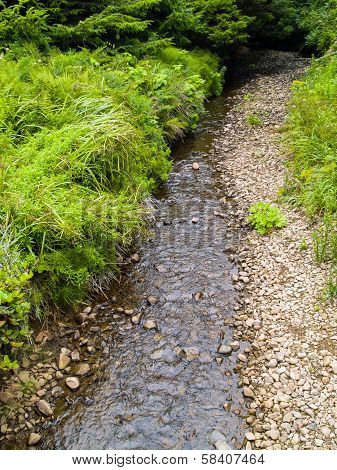 A Stream On A Bed Of Rocks With Green Underbrush