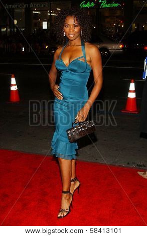 HOLLYWOOD - DECEMBER 06: Vanessa Williams at the premiere of