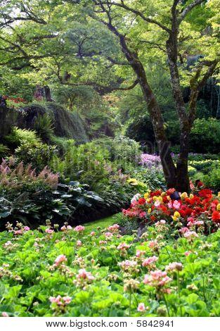 Butchart Gardens in summer, Vancouver Island, Canada