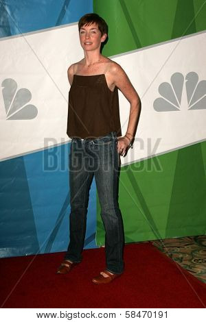 PASADENA - JULY 22: Julianne Nicholson at the NBC TCA Press Tour at Ritz Carlton Huntington Hotel on July 22, 2006 in Pasadena, CA.
