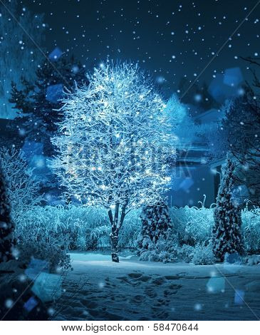 Illuminated Tree Winter Garden Snowfall Fantasy