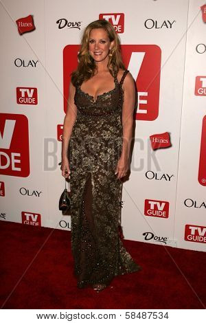 HOLLYWOOD - AUGUST 27: Elizabeth Perkins at the TV Guide Emmy After Party August 27, 2006 in Social, Hollywood, CA.