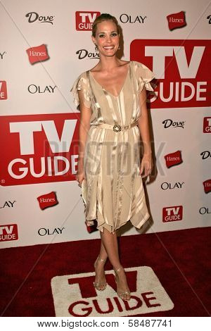 HOLLYWOOD - AUGUST 27: Leslie Bibb at the TV Guide Emmy After Party August 27, 2006 in Social, Hollywood, CA.