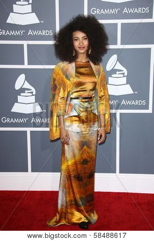 Esperanza Spalding at the 55th Annual GRAMMY Awards, Staples Center, Los Angeles, CA 02-10-13