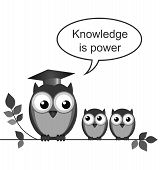Owl teacher knowledge is power message isolated on white background poster