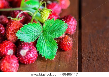 Closeup Of Wild Strawberries On Wooden Table