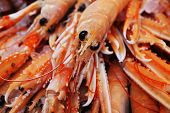 Close up of king prawns displayed on a fish market stall poster