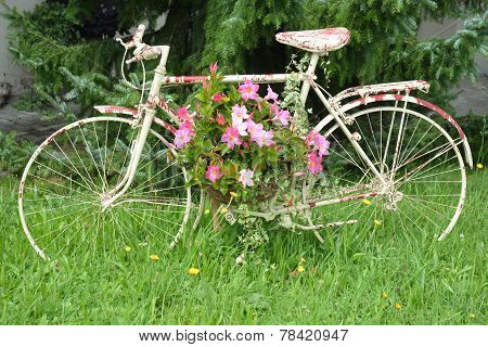Spotted Bicycle With Flowers