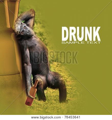 Drunken chimpanzee with hangover after party. Funny picture for your party invitation.