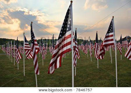 Field Of Heros Flags