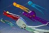 Octopus kites flying at the annual Berkeley kite Festival. poster