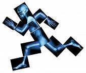Marathon (human bone is running) (Whole body x-ray : head neck shoulder arm elbow forearm hand finger joint thorax abdomen back pelvis hip thigh leg knee foot heel) poster