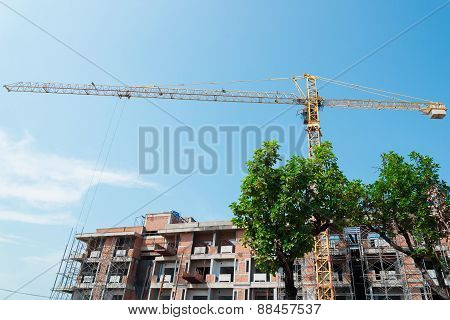 Trees stand in front of Crane and building construction site