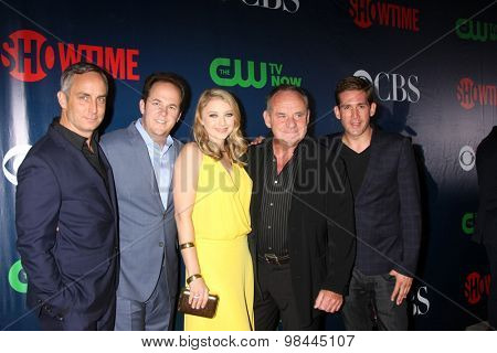 LOS ANGELES - AUG 10:  CSI Cast at the CBS TCA Summer 2015 Party at the Pacific Design Center on August 10, 2015 in West Hollywood, CA