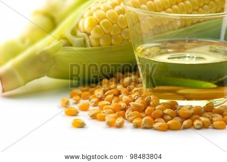 Raw corn, corn kernels and corn oil on white background. Corn in many forms of use.