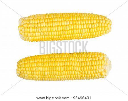 Sweetcorns Isolate On White With Clipping Path