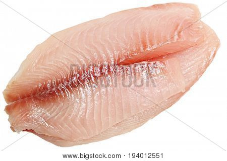 Raw Tilapia Fillets on white background isolated.