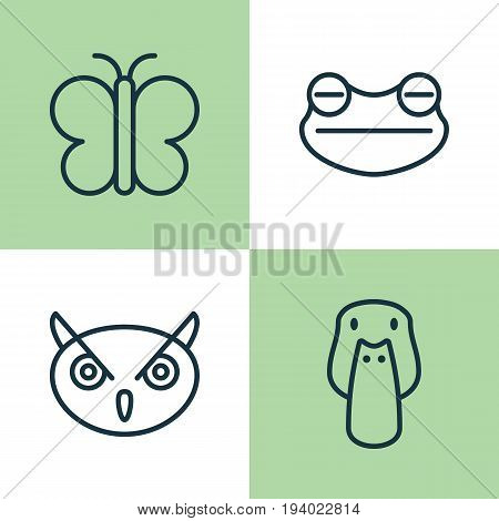 Animal Icons Set. Collection Of Night Fowl, Duck, Moth And Other Elements. Also Includes Symbols Such As Mallard, Butterfly, Duck.
