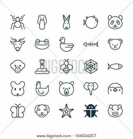 Nature Icons Set. Collection Of Rat, Baboon, Moth And Other Elements. Also Includes Symbols Such As Frog, Marsupial, Globefish.