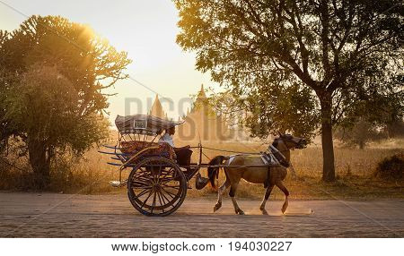 Horse Cart On Rural Road In Bagan, Myanmar