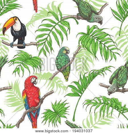 Hand drawn seamless pattern with tropical birds and palm fronds on white background. Vivid parrots and toucan sitting on branches. Vector sketch.