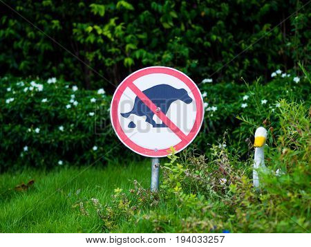 Sign and symbol No dog pooping sign in park