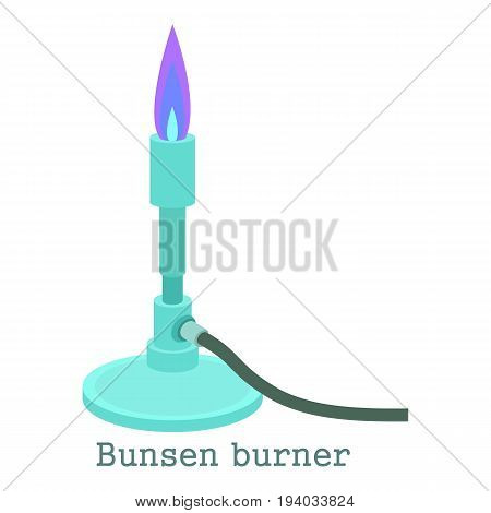 Bunsen burner icon. Cartoon illustration of bunsen burner vector icon for web isolated on white background