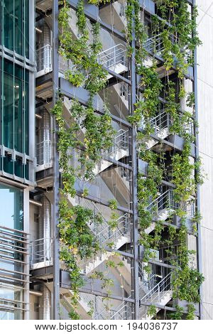 Auckland New Zealand NZ - June 15 2017 - Exterior of a modern office building with a living wall of plants