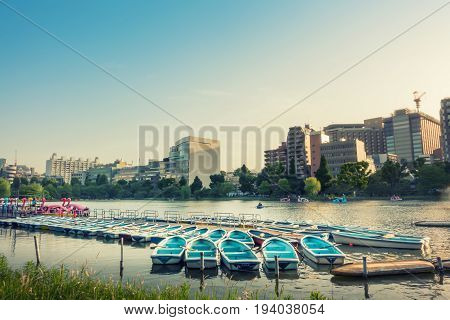 Rowing boat docking in Lake pier in tokyo city