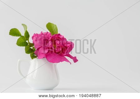Wild Pink Roses In Vase On White Tablecloth