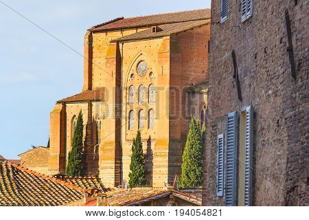 The houses of medieval town in Tuscany, Italy and cypress trees at the sunset sun